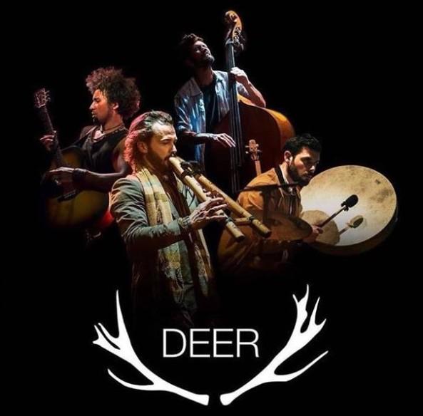 deer tour 2018