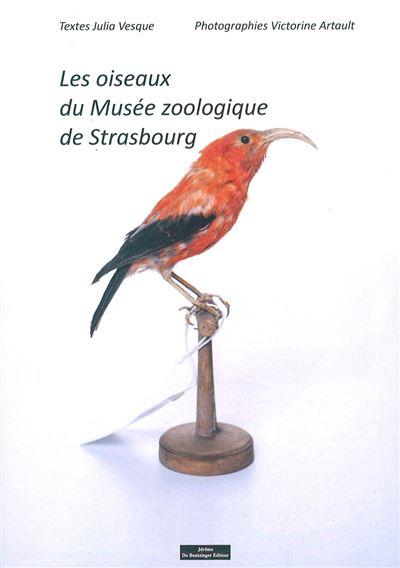 Les-oiseaux-du-musee-zoologique-de-strasbourg